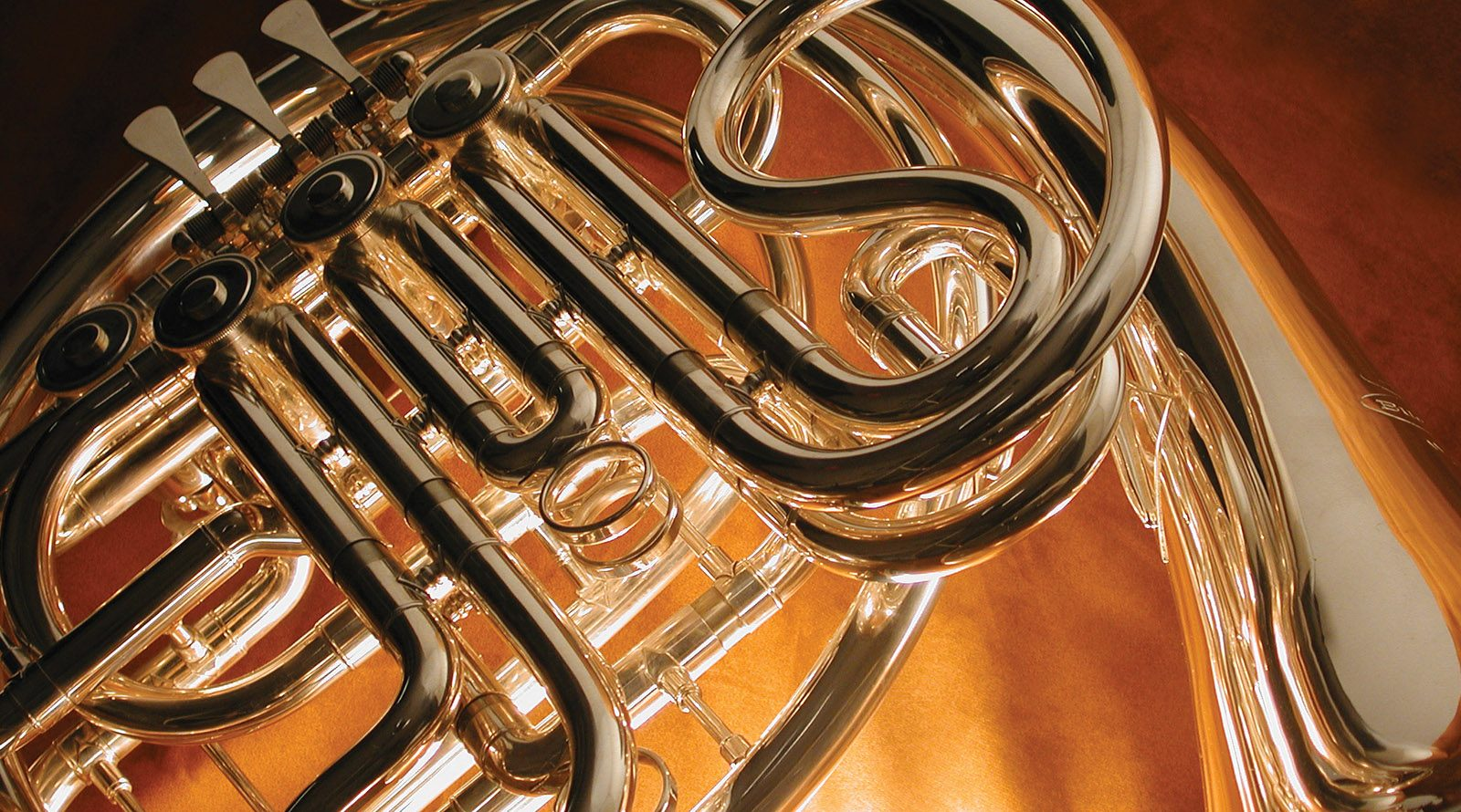 faculty categories french horn